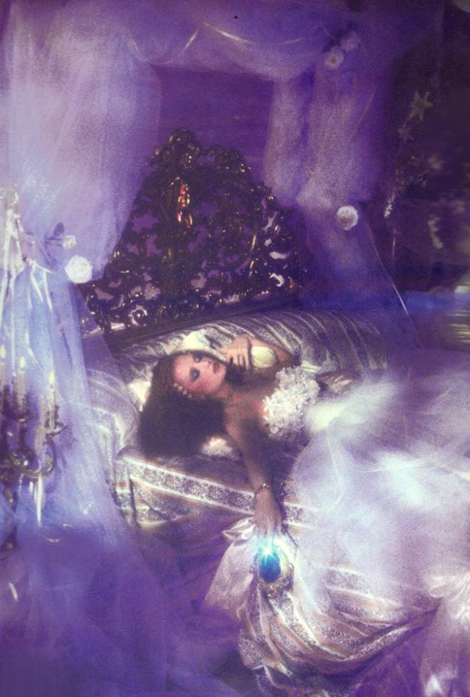 Sleeping Beauty by Rebecca Blake